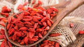 Goji berries- Healthy superfood to boost your immunity